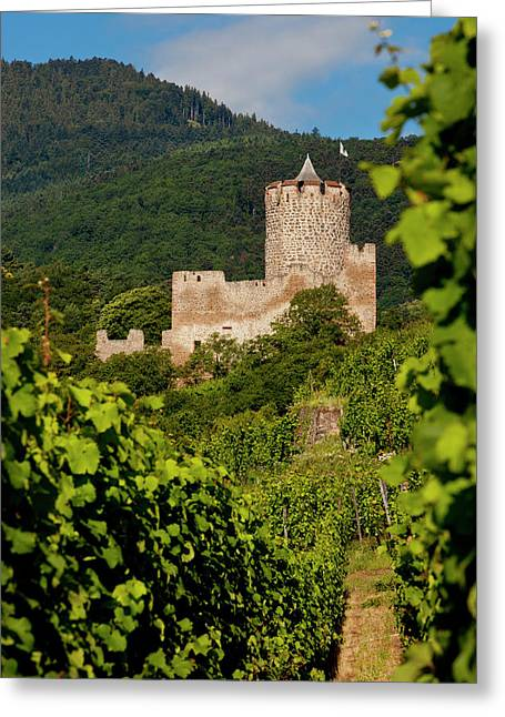 The Ruins Of The Kaysersberg Chateau Greeting Card by Brian Jannsen