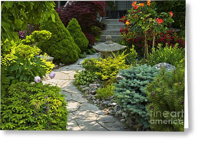 Front Steps Greeting Cards - Tranquil garden  Greeting Card by Elena Elisseeva