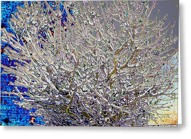 Pale Form Greeting Cards - Tree Greeting Card by Carol Lynch