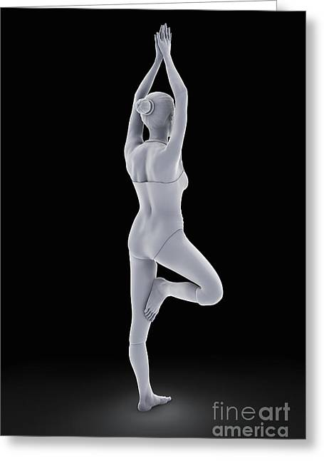 Physical Body Greeting Cards - Tree Yoga Pose Greeting Card by Science Picture Co