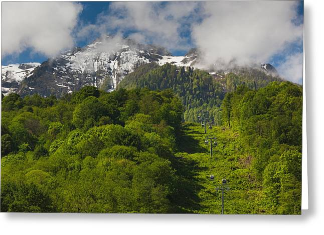 Sochi Russia Greeting Cards - Trees In Mountain Landscape, Carousel Greeting Card by Panoramic Images