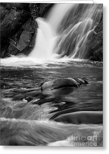 Peaceful Water Greeting Cards - Trues Brook Gorge Water Fall Greeting Card by Edward Fielding