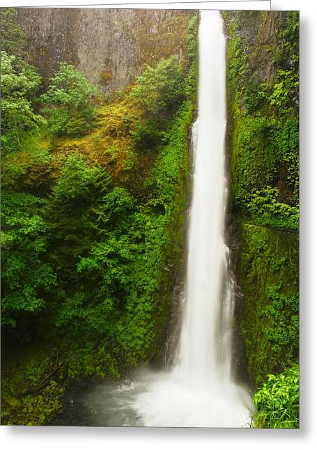 Eagle Creek Greeting Cards - Tunnel Falls Greeting Card by Jeff  Swan