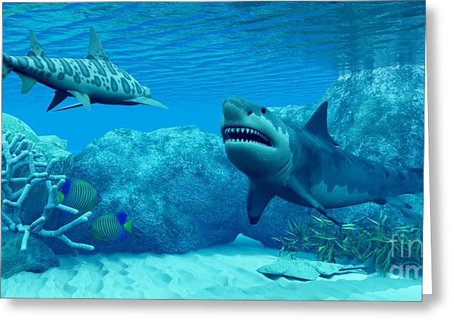 White Shark Greeting Cards - Underwater World Greeting Card by Corey Ford