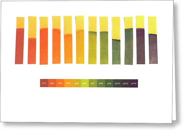 Universal Indicator Paper Greeting Card by Science Photo Library