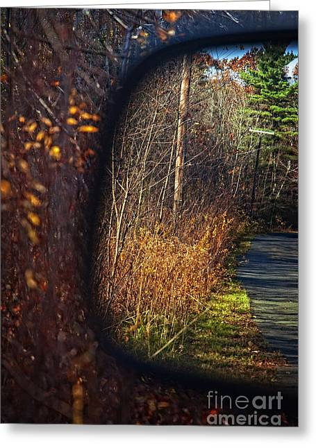 Look Photographs Greeting Cards - Untitled Greeting Card by HD Connelly