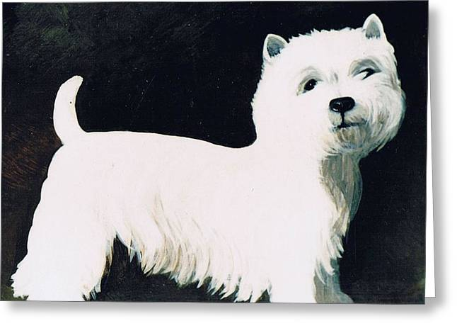 West Highland Terriers Greeting Cards - Untitled Greeting Card by Maggie Rowe