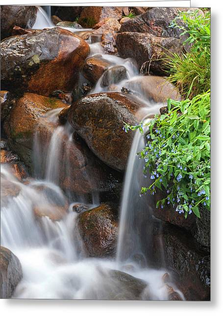 Usa, Colorado, Clear Creek County Greeting Card by Jaynes Gallery
