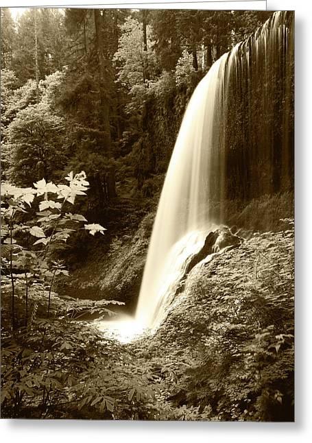 Usa, Oregon, Silver Falls State Park Greeting Card by Adam Jones