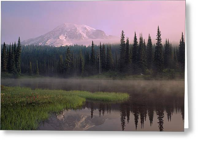 Misty Pine Photography Greeting Cards - Usa, Washington, Mount Rainier National Greeting Card by Panoramic Images