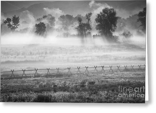 Salmon River Idaho Greeting Cards - Valley Mists Greeting Card by Idaho Scenic Images Linda Lantzy