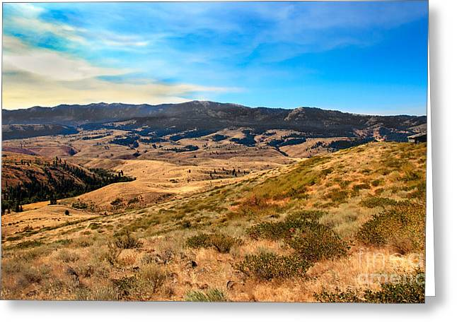 Landsacape Greeting Cards - Vast View Greeting Card by Robert Bales