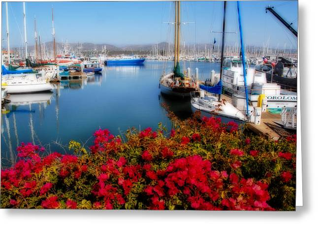 Ventura California Greeting Cards - Ventura Harbor Greeting Card by Lynn Bauer