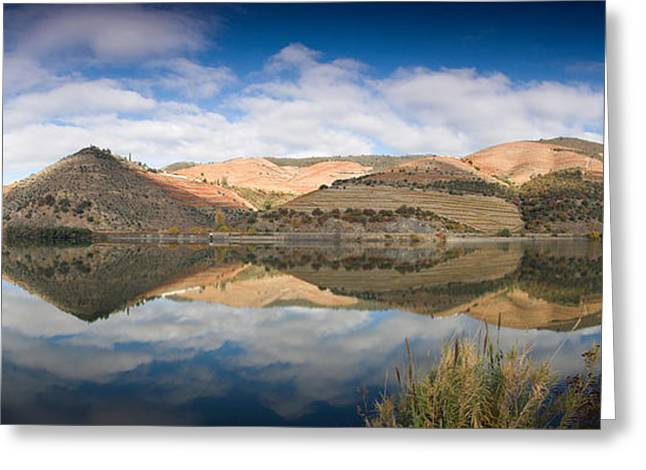 Reflections In River Greeting Cards - Vineyards At The Riverside, Cima Corgo Greeting Card by Panoramic Images