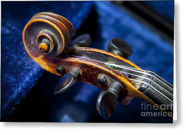 Violin Case Greeting Cards - Violin in its case Greeting Card by Brian Jannsen