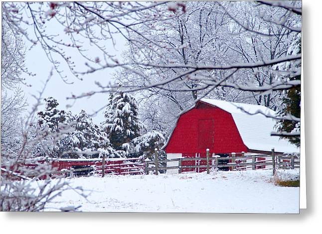 Barnstormer Greeting Cards - Virginia Red Barn Greeting Card by Guy Shultz