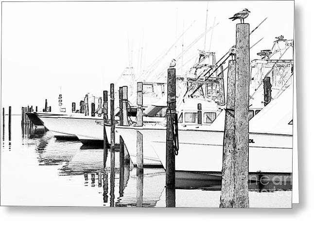 Surreal Landscape Mixed Media Greeting Cards - Waiting for Food - Outer Banks Greeting Card by Dan Carmichael