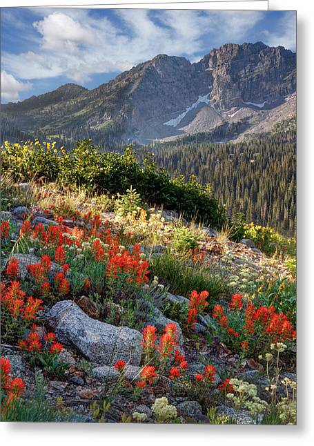 Spectacular Greeting Cards - Wasatch Mountains of Utah Greeting Card by Utah Images