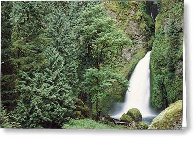Moss Greeting Cards - Waterfall In A Forest, Columbia River Greeting Card by Panoramic Images