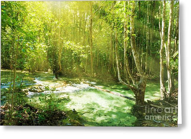 Unseen Greeting Cards - Waterfall In Rainforest Greeting Card by Atiketta Sangasaeng