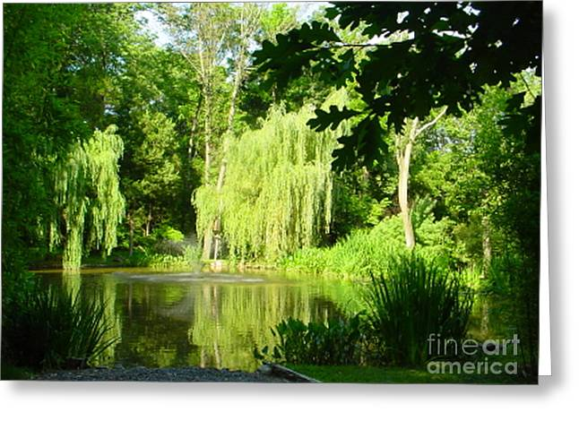 Willow Lake Greeting Cards - Weeping Willow Pond Greeting Card by Lyric Lucas