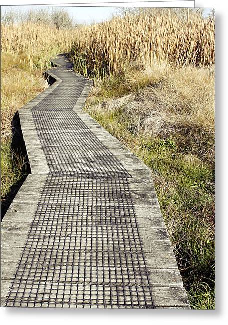 Boardwalk Greeting Cards - Wetland walk Greeting Card by Les Cunliffe