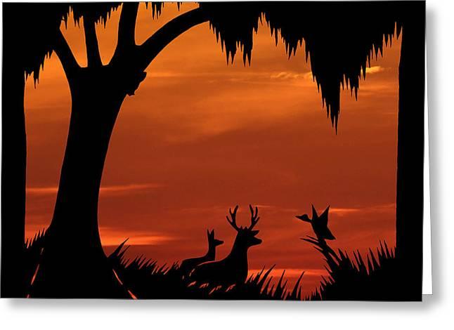 Wetland Wildlife - Sunset Sky Greeting Card by Al Powell Photography USA