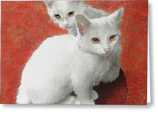 Pet Portraits Digital Art Greeting Cards - White Kittens Greeting Card by Jane Schnetlage