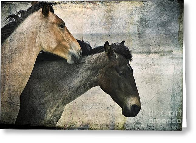 Wild Love Greeting Card by Laura Marie Jones