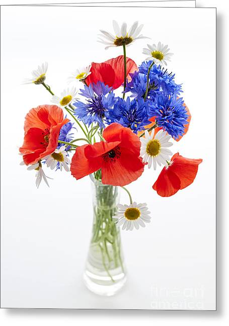 Wildflower Bouquet Greeting Card by Elena Elisseeva