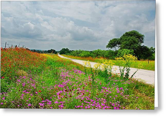 Wildflower Wonderland Greeting Card by Lynn Bauer
