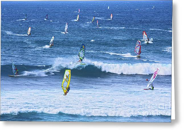; Maui Greeting Cards - Windsurfers on Maui Greeting Card by Diane Diederich