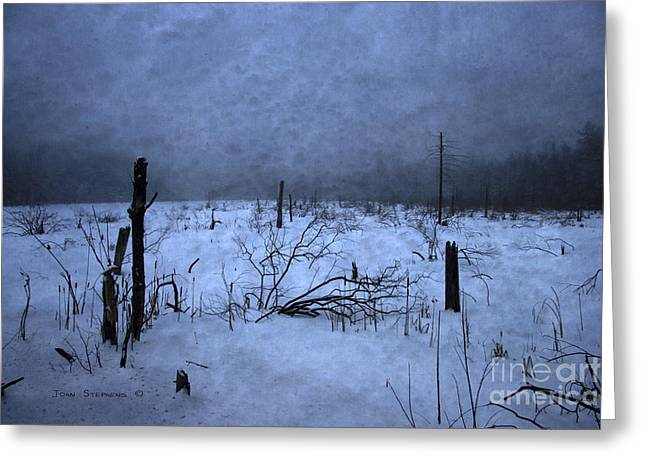 Steward Greeting Cards - Winter Blues Greeting Card by John Stephens