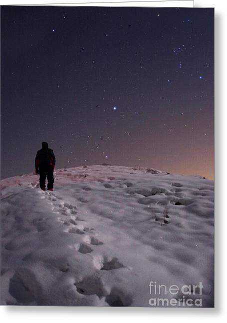 Snowy Night Night Greeting Cards - Winter Stars Greeting Card by Babak Tafreshi