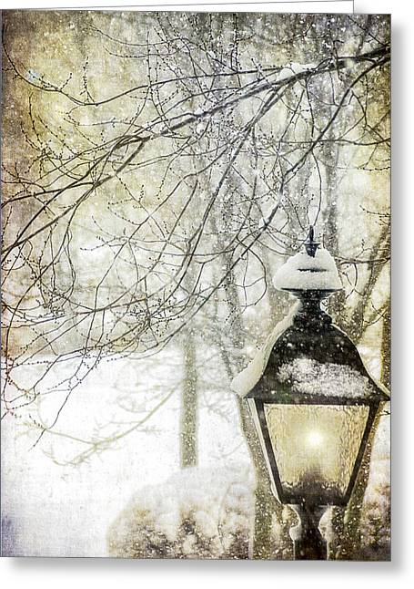 Winter Digital Photo Scene Greeting Cards - Winter Stillness Greeting Card by Julie Palencia