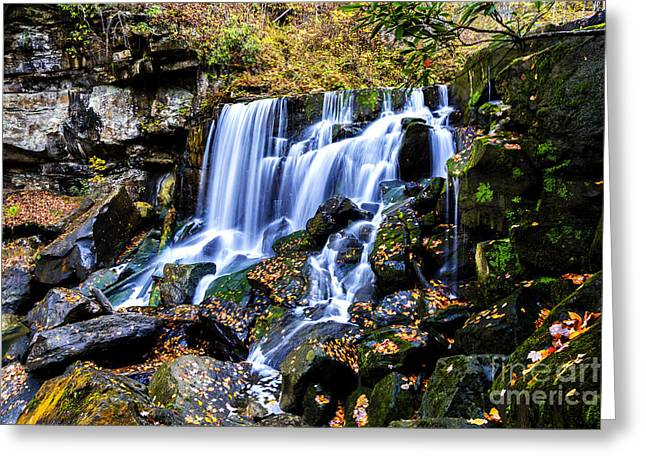 Wolf Creek Greeting Cards - Wolf Creek Falls Greeting Card by Thomas R Fletcher