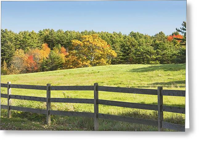 Green Grass Blue Sky Greeting Cards - Wooden Fence In Autumn Maine Farm Pasture Greeting Card by Keith Webber Jr