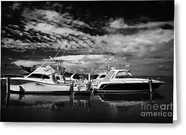 Clean Water Greeting Cards - Wooden Jetty And Sports Boats Islamorada Florida Keys Usa Greeting Card by Joe Fox