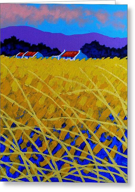 Landscape Framed Prints Greeting Cards - Yellow Meadow Greeting Card by John  Nolan