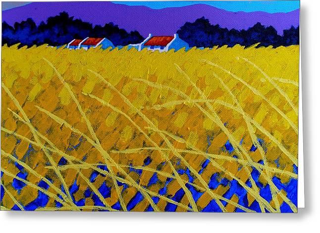Yellow Meadow Greeting Card by John  Nolan