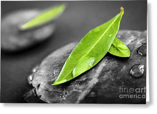 Organic Photographs Greeting Cards - Zen stones Greeting Card by Elena Elisseeva
