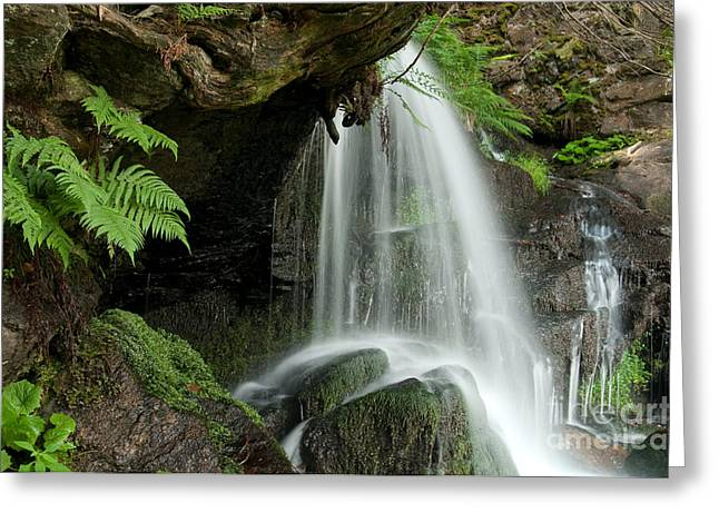 Moist Greeting Cards - Zweribach Waterfall, Germany Greeting Card by Dr. Thorsten Katz