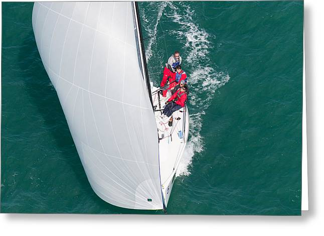 Ocean Sailing Greeting Cards - Key West Race Week Greeting Card by Steven Lapkin
