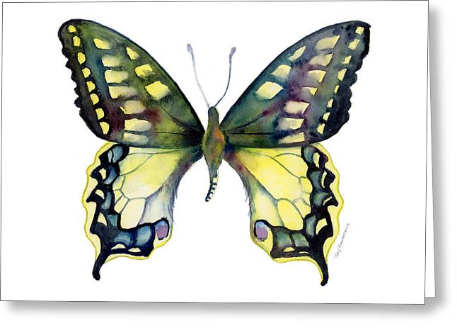 White Background Greeting Cards - 20 Old World Swallowtail Butterfly Greeting Card by Amy Kirkpatrick