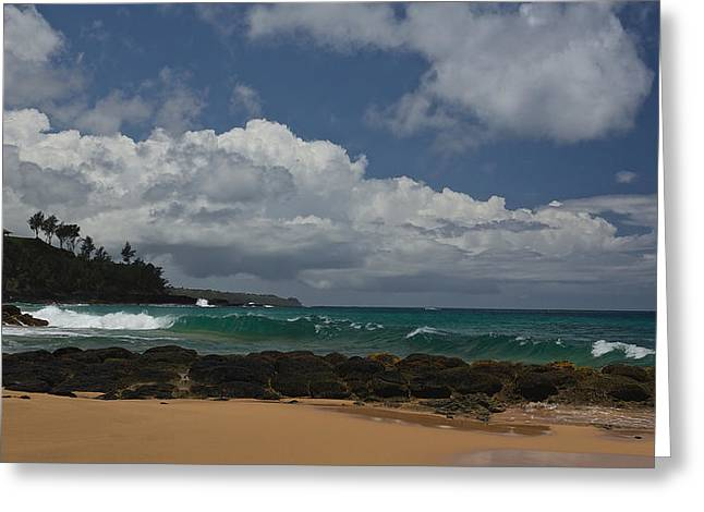 Penn Cove Greeting Cards - Secret Beach Kauai Greeting Card by Steven Lapkin