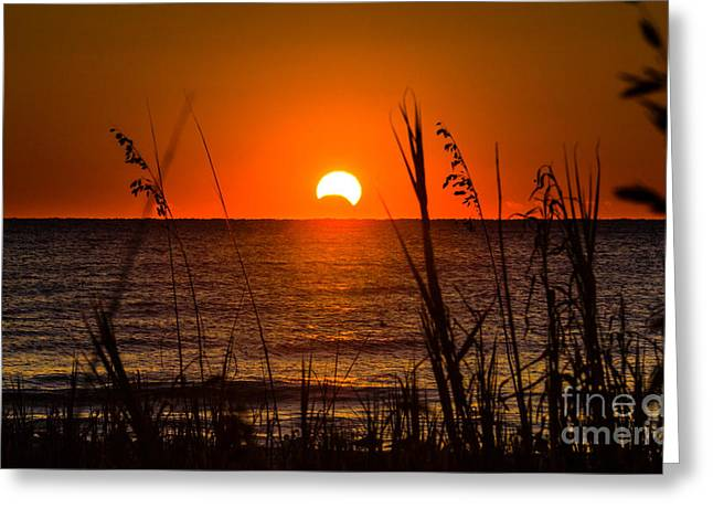 Solar Eclipse Greeting Cards - 2013 Partial Solar Eclipse Greeting Card by Matthew Trudeau