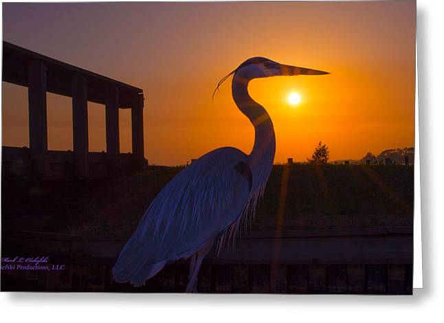 Sunset Greeting Cards Greeting Cards - 2014 03 22 02 c GBH Sunburst Greeting Card by Mark Olshefski