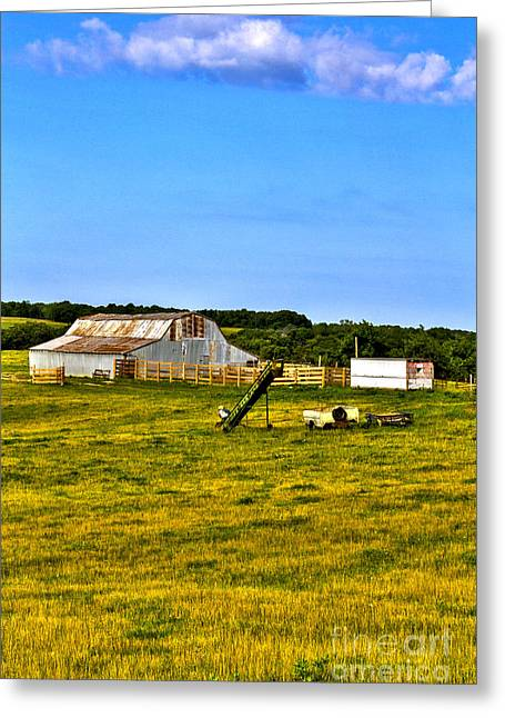 Barn Yard Greeting Cards - 2014 July Barn Out in Field Greeting Card by Rick Grisolano Photography LLC