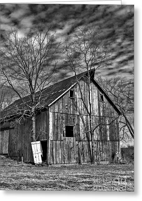 Barn Yard Greeting Cards - 2014 March Old Barn and Trees No 1 BW Greeting Card by Rick Grisolano Photography LLC