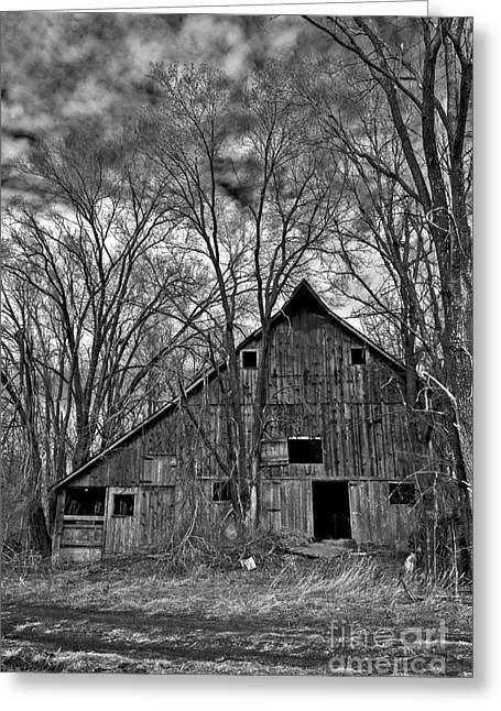 Barn Yard Greeting Cards - 2014 March Old Barn and Trees No 3 BW Greeting Card by Rick Grisolano Photography LLC